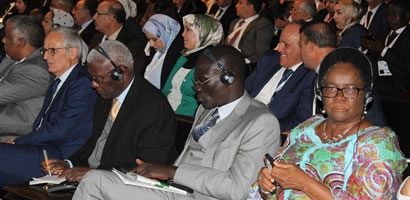 THE COUNCIL OF GOVERNORS ATTENDS AFRICITIES SUMMIT 8