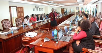 TRAINING OF GENDER FOCAL PERSONS AT THE COUNCIL